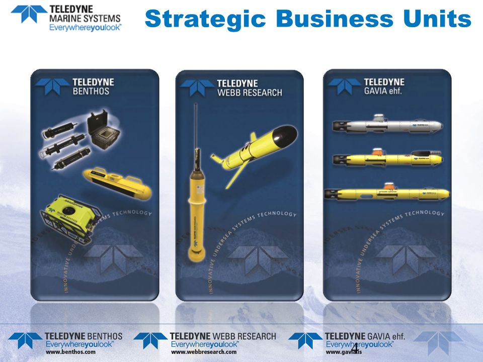 4 Strategic Business Units