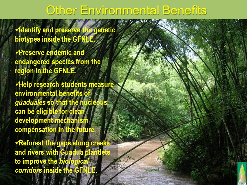 Other Environmental Benefits Identify and preserve the genetic biotypes inside the GFNLE.