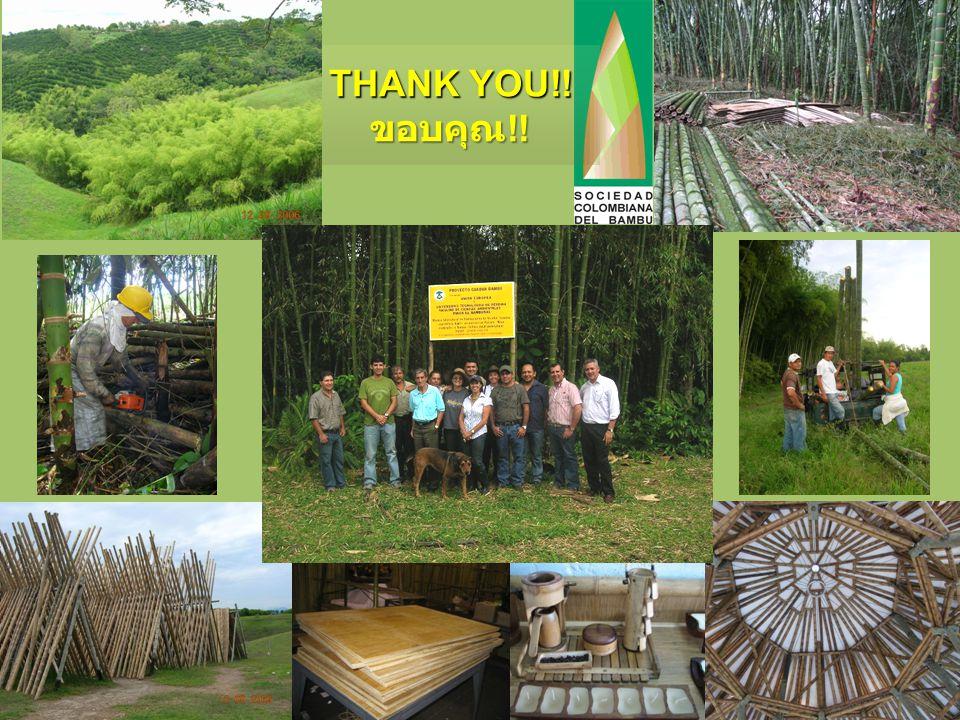 THANK YOU!! ขอบคุณ !!