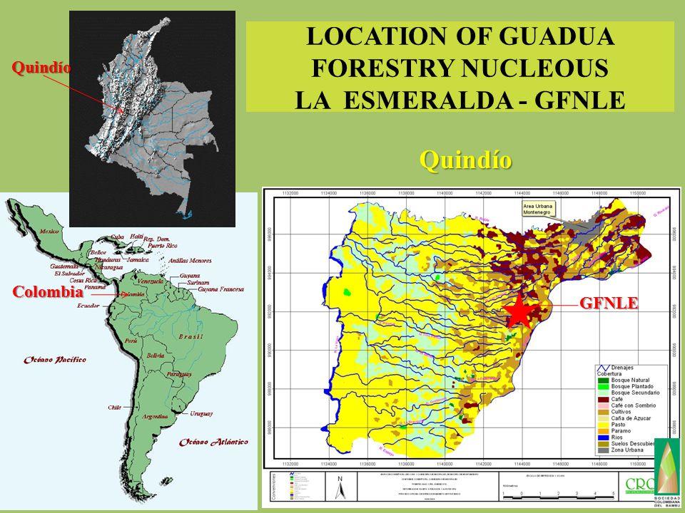 LOCATION OF GUADUA FORESTRY NUCLEOUS LA ESMERALDA - GFNLE Quindío Colombia GFNLE Quindío
