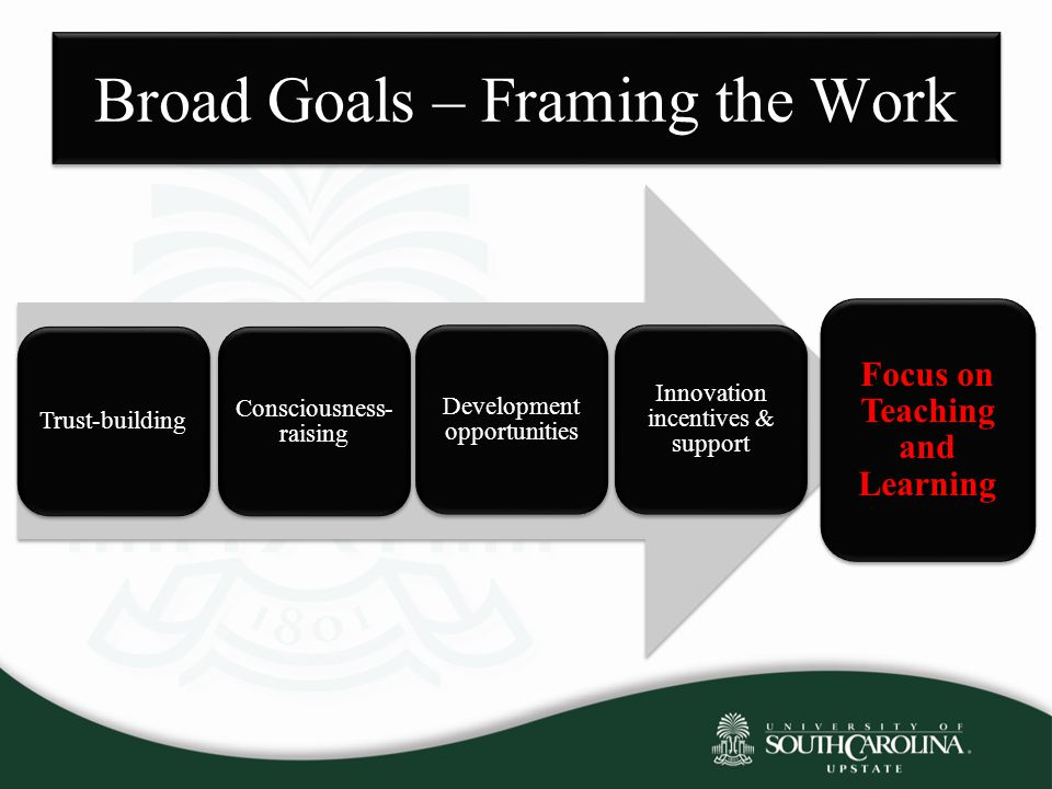 Broad Goals – Framing the Work Trust-building Consciousness- raising Innovation incentives & support Development opportunities Focus on Teaching and L