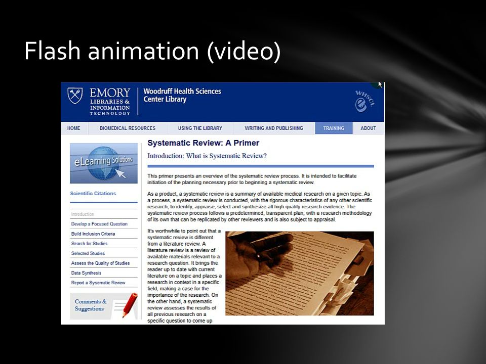 Flash animation (video)