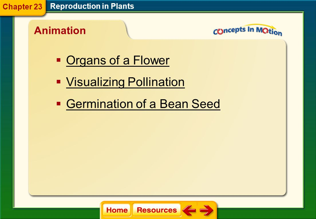polar nuclei endosperm seed coat germination radicle hypocotyl dormancy Reproduction in Plants Chapter 23 Vocabulary Section 3