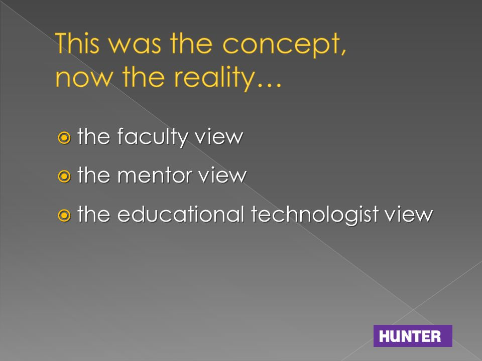  the faculty view  the mentor view  the educational technologist view