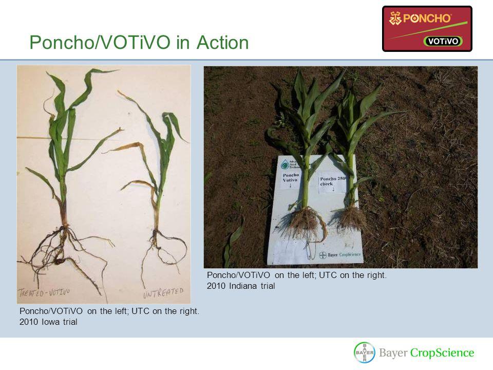 Poncho/VOTiVO in Action Poncho/VOTiVO on the left; UTC on the right.