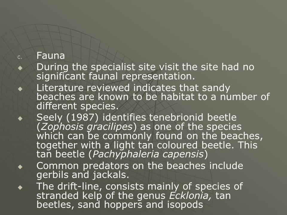 c. c. Fauna   During the specialist site visit the site had no significant faunal representation.   Literature reviewed indicates that sandy beach
