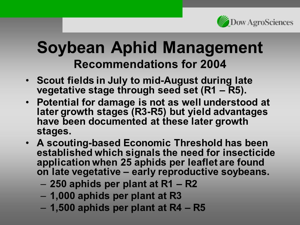Soybean Aphid Management Recommendations for 2004 Scout fields in July to mid-August during late vegetative stage through seed set (R1 – R5).