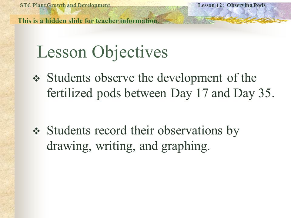 Lesson Objectives  Students observe the development of the fertilized pods between Day 17 and Day 35.  Students record their observations by drawing