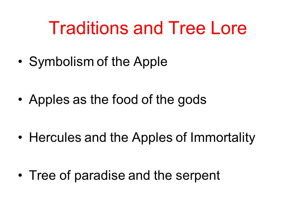 Traditions and Tree Lore Symbolism of the Apple Apples as the food of the gods Hercules and the Apples of Immortality Tree of paradise and the serpent