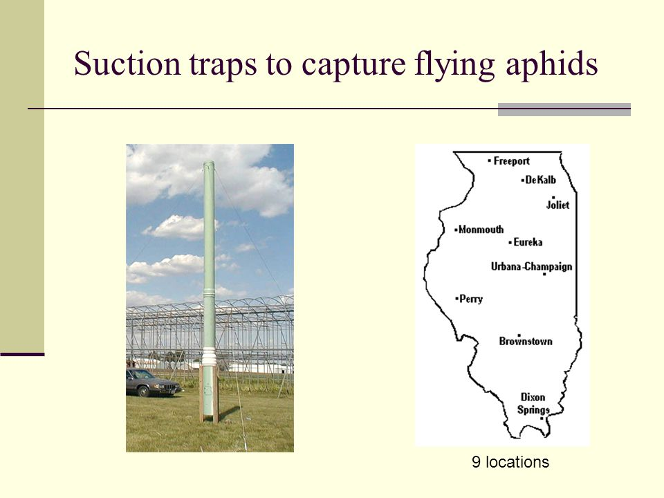 Suction traps to capture flying aphids 9 locations