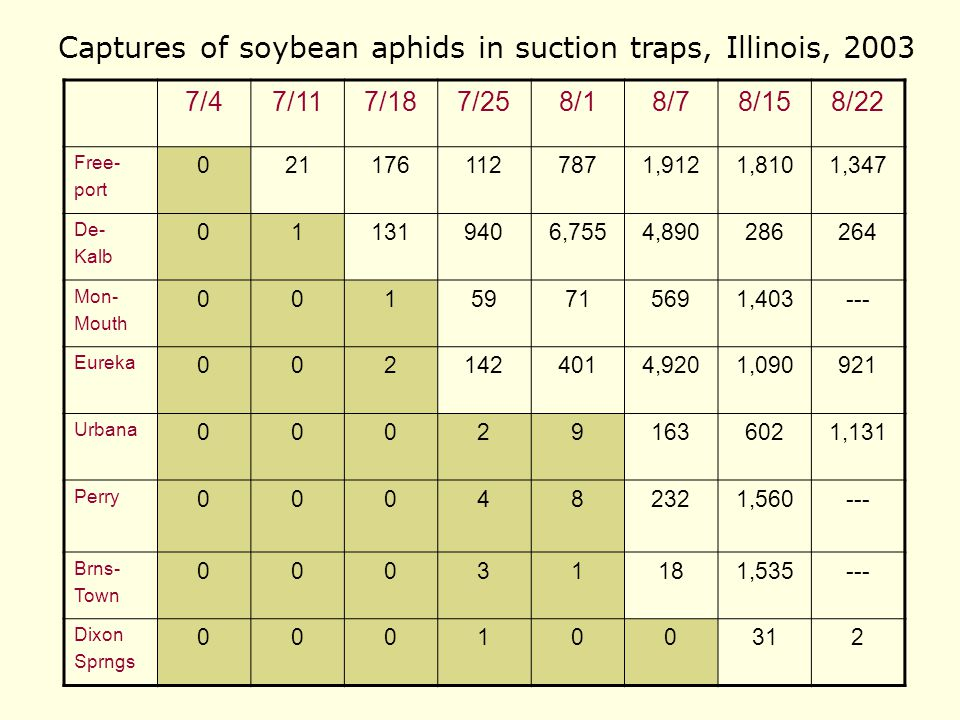 Data from 2002 Mean no. aphids per plant (from D. Onstad)