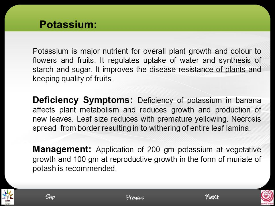 Potassium is major nutrient for overall plant growth and colour to flowers and fruits.