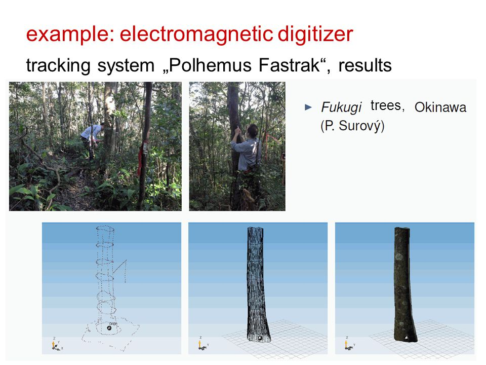 "example: electromagnetic digitizer tracking system ""Polhemus Fastrak , results trees,"