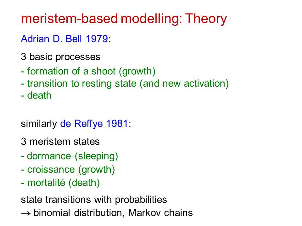 meristem-based modelling: Theory Adrian D.