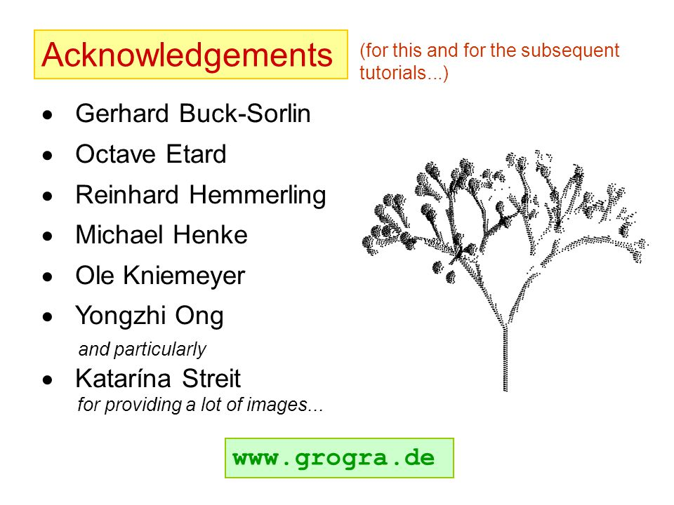 Acknowledgements  Gerhard Buck-Sorlin  Octave Etard  Reinhard Hemmerling  Michael Henke  Ole Kniemeyer  Yongzhi Ong and particularly  Katarína Streit for providing a lot of images...