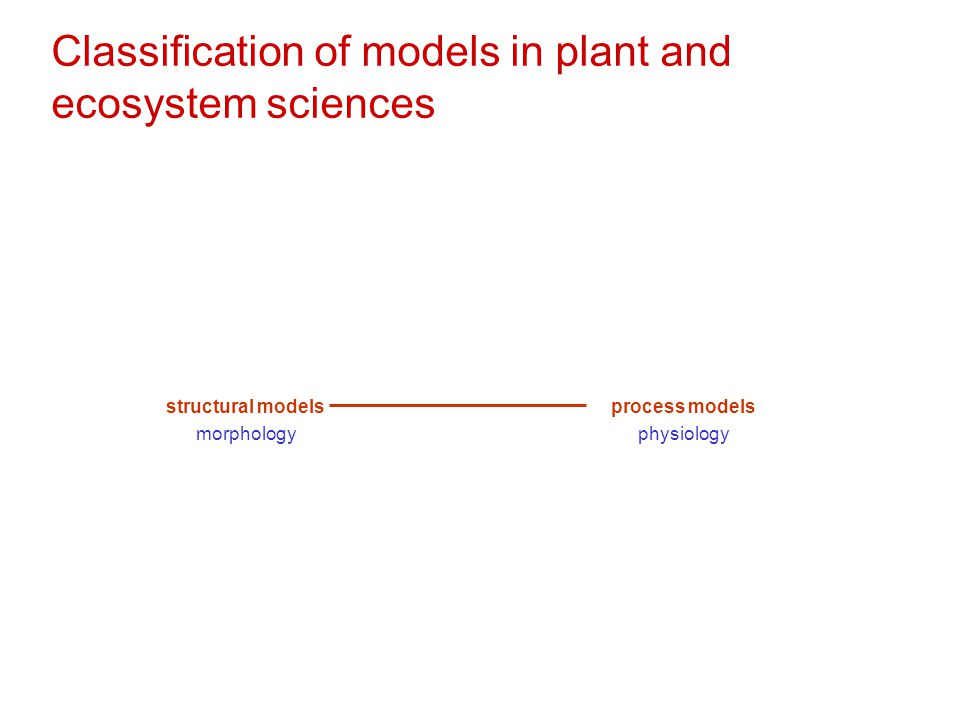 Classification of models in plant and ecosystem sciences structural models morphology process models physiology