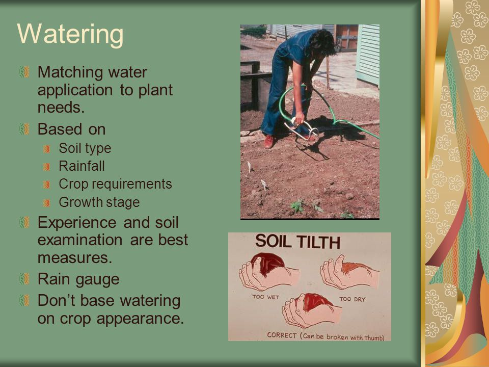 Watering Matching water application to plant needs.