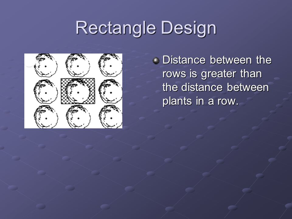 Rectangle Design Distance between the rows is greater than the distance between plants in a row.