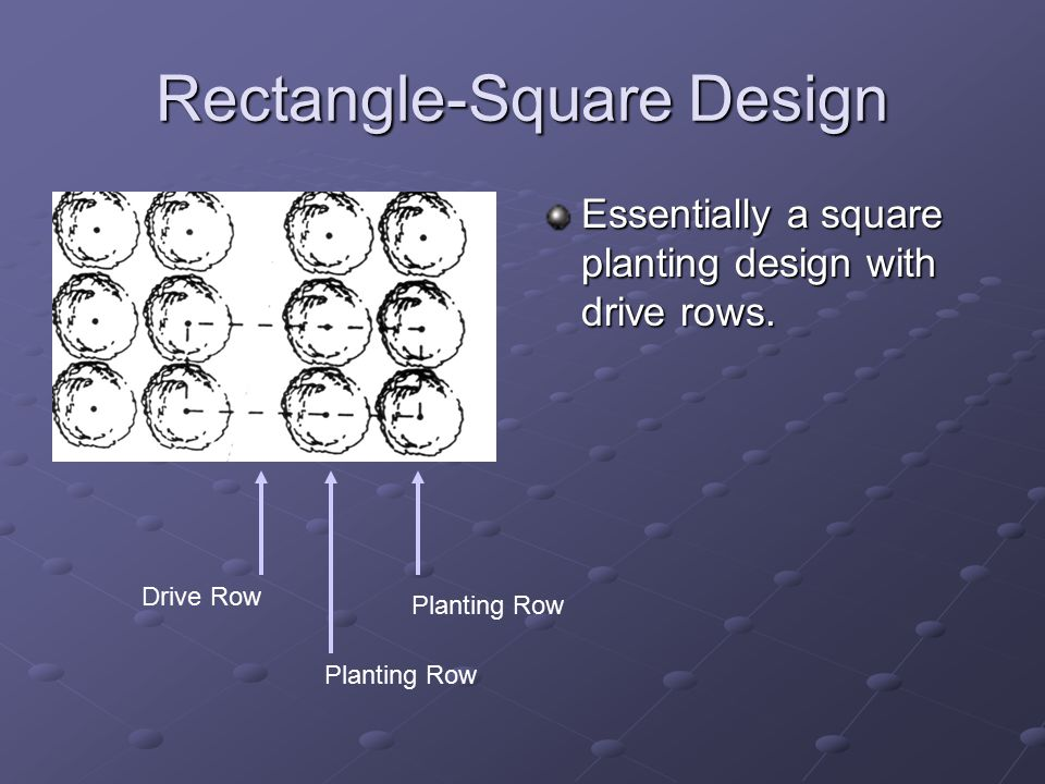 Rectangle-Square Design Essentially a square planting design with drive rows.