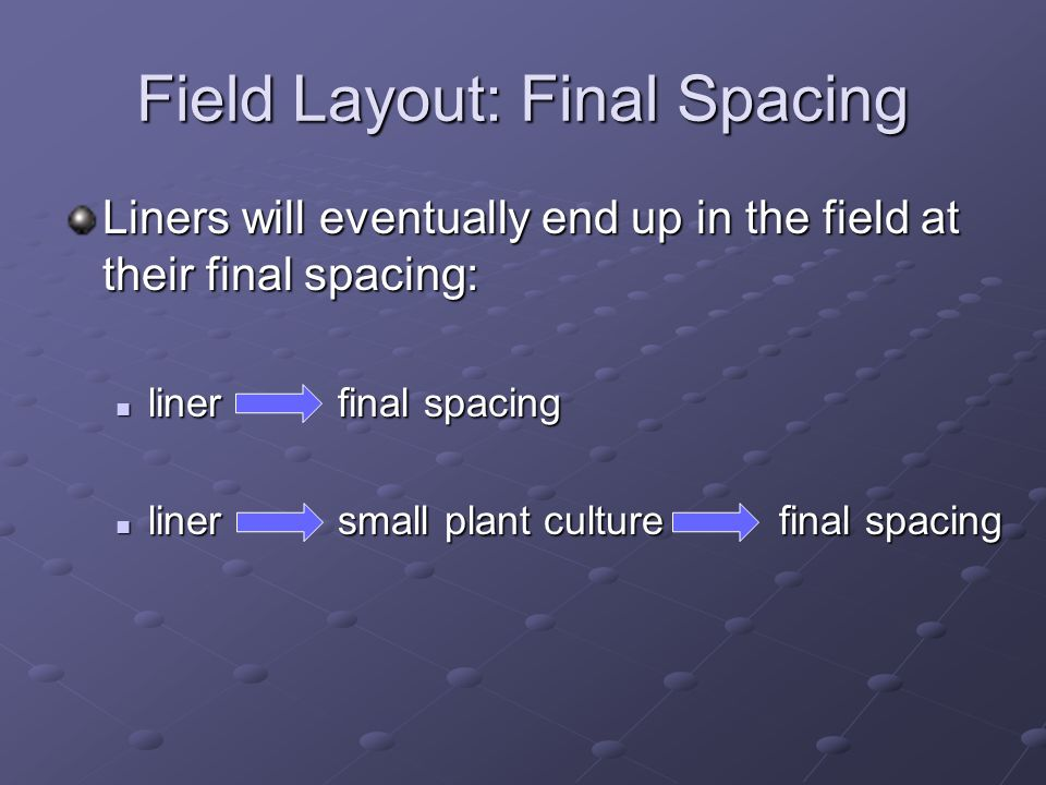 Field Layout: Final Spacing Liners will eventually end up in the field at their final spacing: liner final spacing liner final spacing liner small plant culture final spacing liner small plant culture final spacing