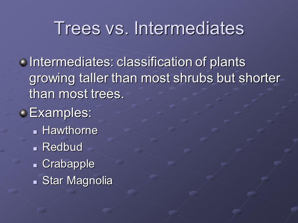 Trees vs.