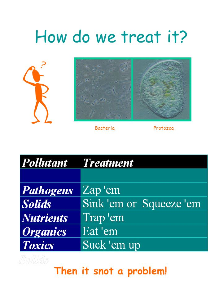 How do we treat it Then it snot a problem! Bacteria Protozoa