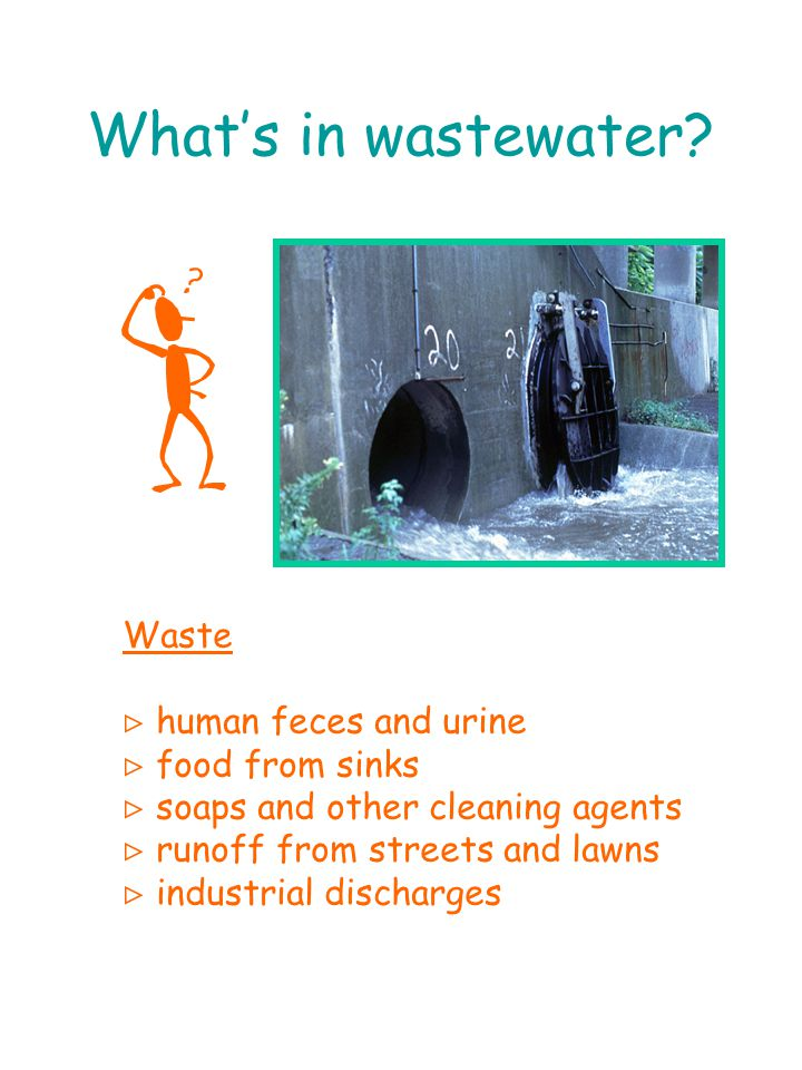 What's in wastewater.