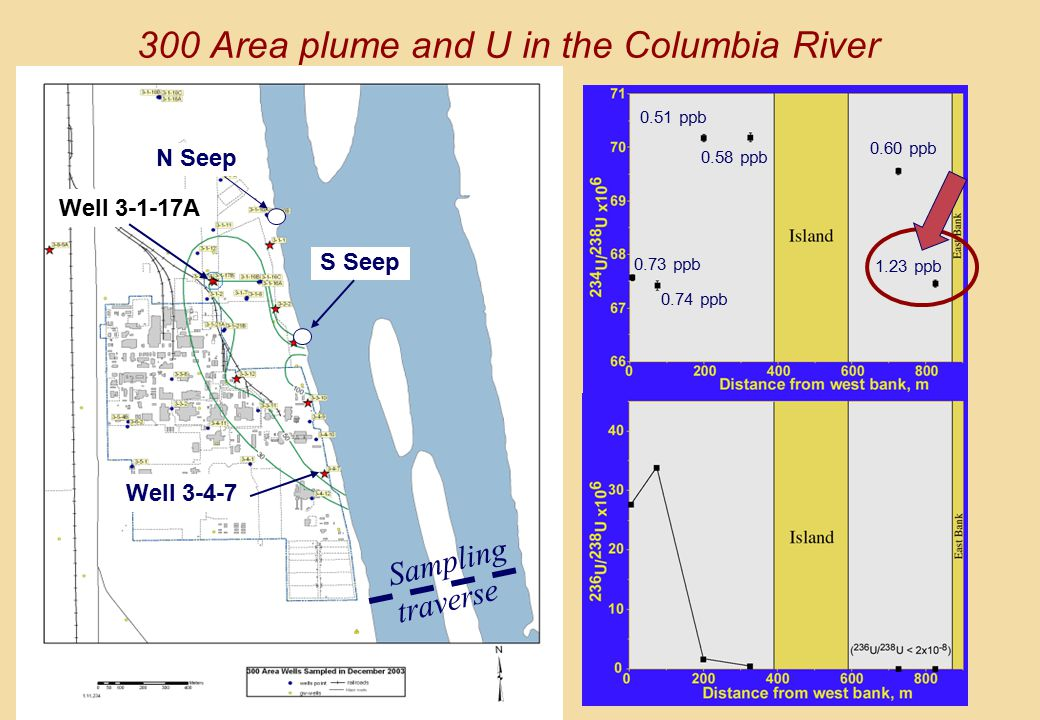 100 50 30 Well 3-1-17A Well 3-4-7 N Seep S Seep 0.51 ppb 0.58 ppb 0.73 ppb 0.74 ppb 0.60 ppb 1.23 ppb 300 Area plume and U in the Columbia River Sampling traverse