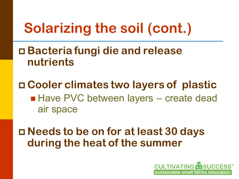 Solarizing the soil (cont.)  Bacteria fungi die and release nutrients  Cooler climates two layers of plastic Have PVC between layers – create dead air space  Needs to be on for at least 30 days during the heat of the summer