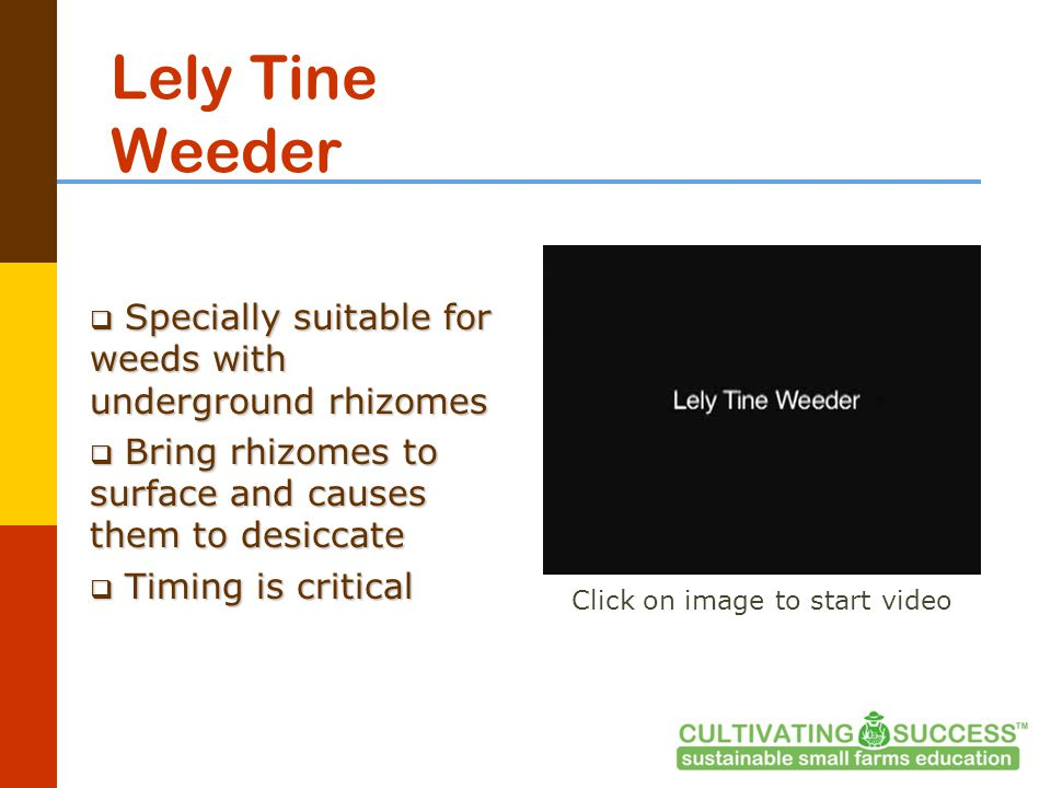 Lely Tine Weeder  Specially suitable for weeds with underground rhizomes  Bring rhizomes to surface and causes them to desiccate  Timing is critical Click on image to start video