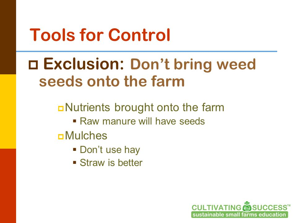 Tools for Control  Exclusion: Don't bring weed seeds onto the farm  Nutrients brought onto the farm  Raw manure will have seeds  Mulches  Don't use hay  Straw is better