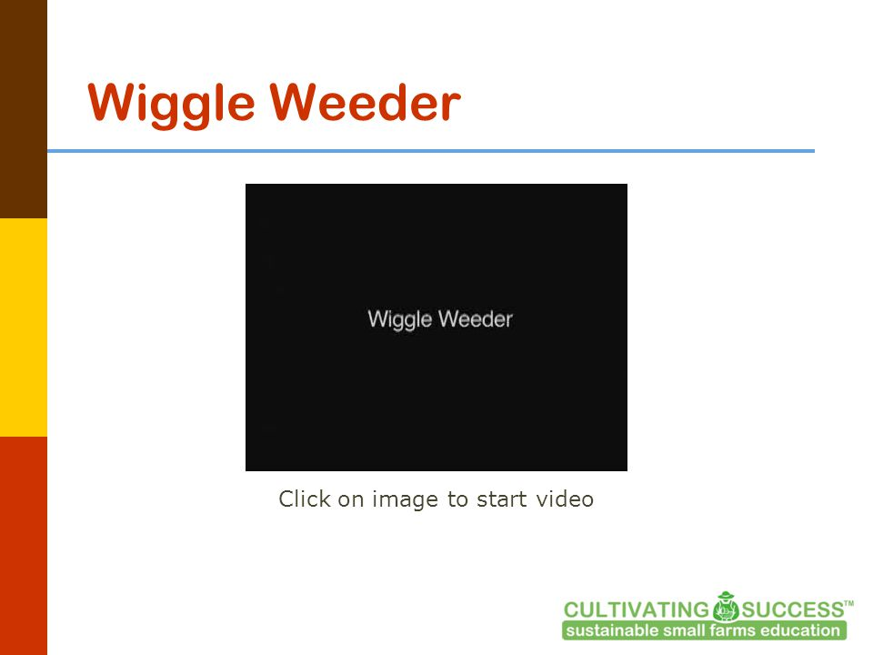 Wiggle Weeder Click on image to start video