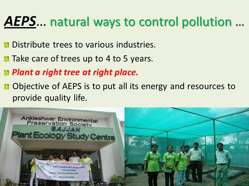 natural ways to control pollution AEPS… natural ways to control pollution … Distribute trees to various industries.