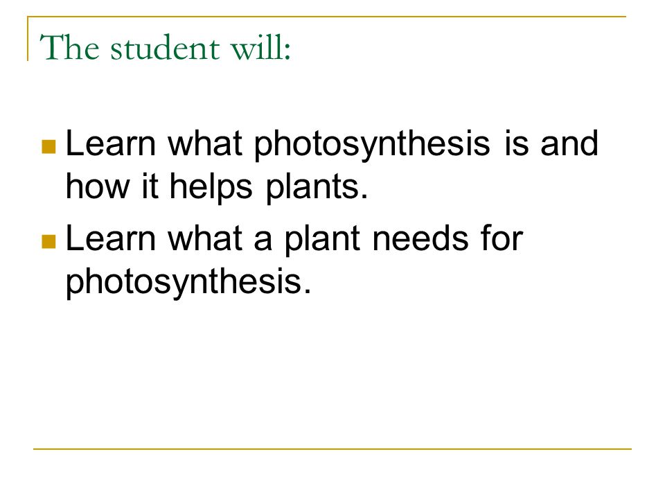 The student will: Learn what photosynthesis is and how it helps plants. Learn what a plant needs for photosynthesis.