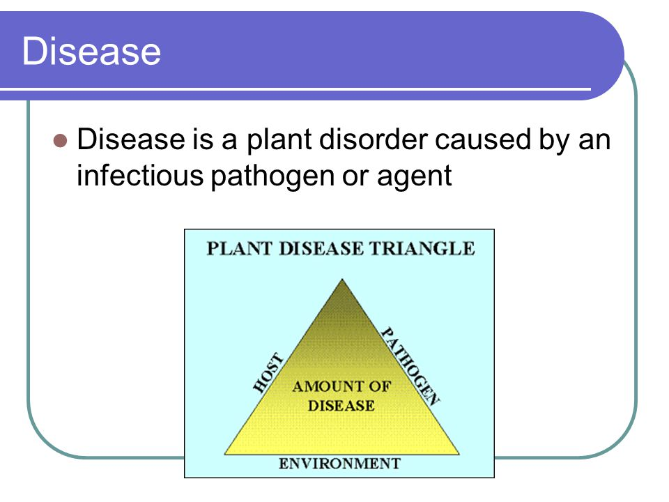 Disease Disease is a plant disorder caused by an infectious pathogen or agent