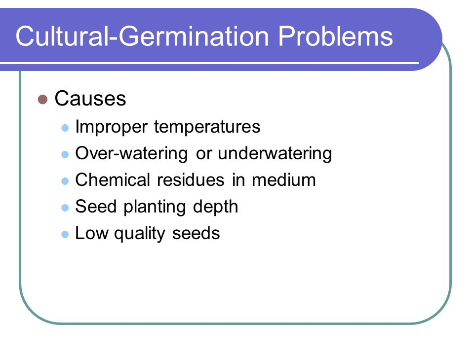 Cultural-Germination Problems Causes Improper temperatures Over-watering or underwatering Chemical residues in medium Seed planting depth Low quality
