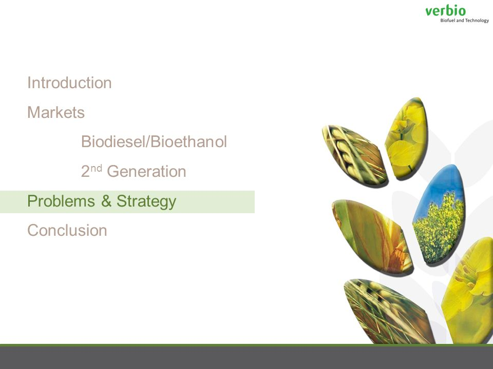 Introduction Markets Biodiesel/Bioethanol 2 nd Generation Problems & Strategy Conclusion