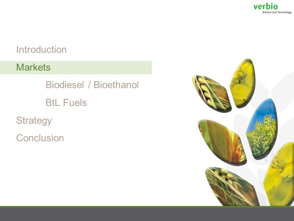 Introduction Markets Biodiesel / Bioethanol BtL Fuels Strategy Conclusion