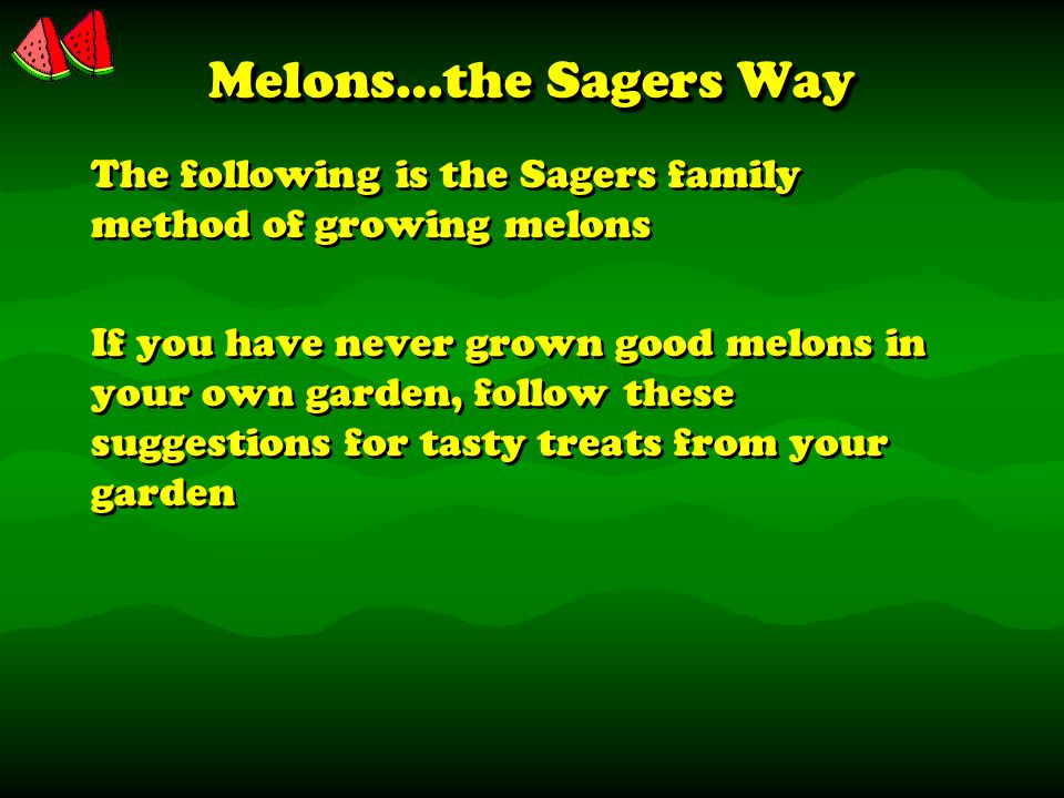 Melons…the Sagers Way The following is the Sagers family method of growing melons If you have never grown good melons in your own garden, follow these suggestions for tasty treats from your garden The following is the Sagers family method of growing melons If you have never grown good melons in your own garden, follow these suggestions for tasty treats from your garden