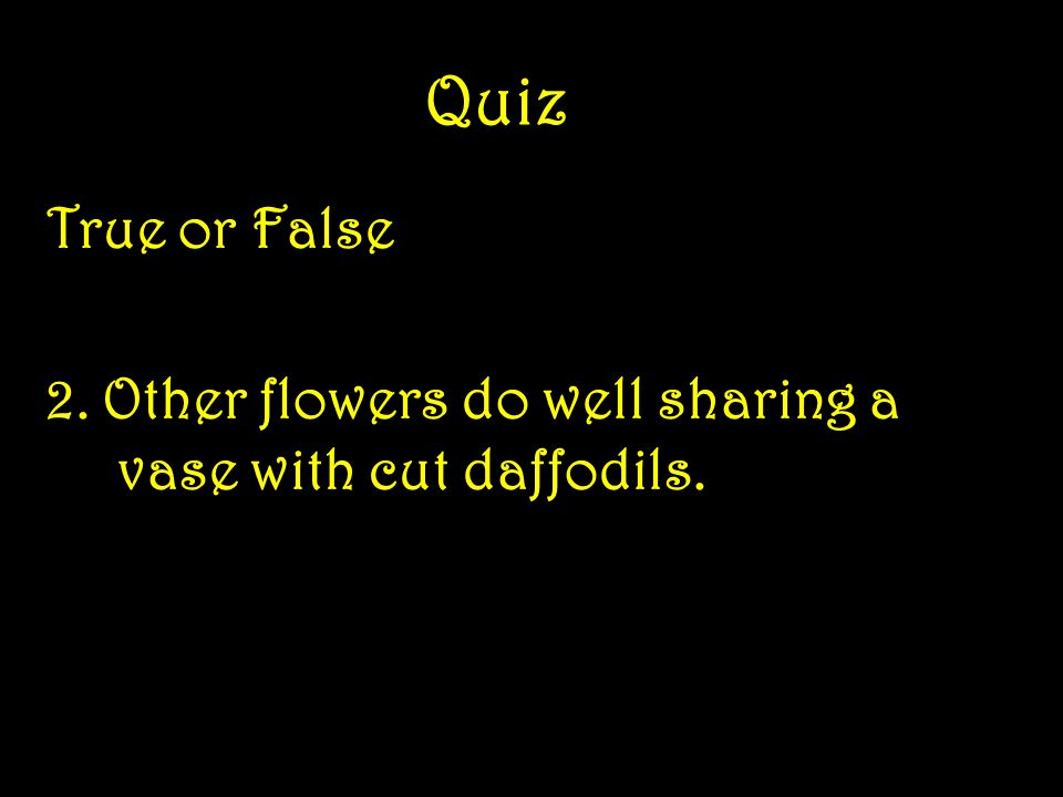 Quiz True or False 1.Deer find daffodils especially tasty.
