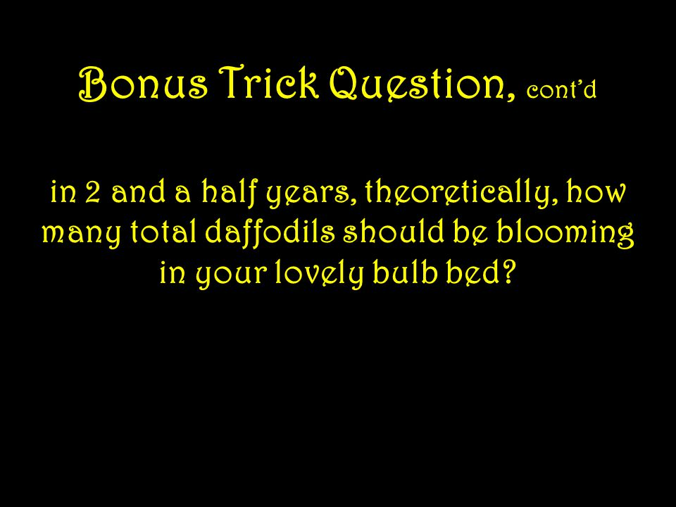 Bonus Trick Question, cont'd they don't suffer drought in the spring or get dug up by the neighbor s dog (your dog would never do anything like that!)