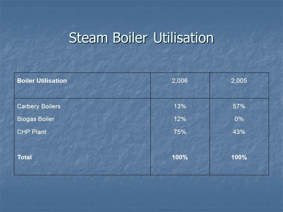 Steam Boiler Utilisation Boiler Utilisation2,0062,005 Carbery Boilers13%57% Biogas Boiler12%0% CHP Plant75%43% Total100%