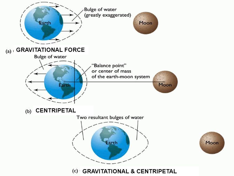 CENTRIPETAL GRAVITATIONAL FORCE GRAVITATIONAL & CENTRIPETAL