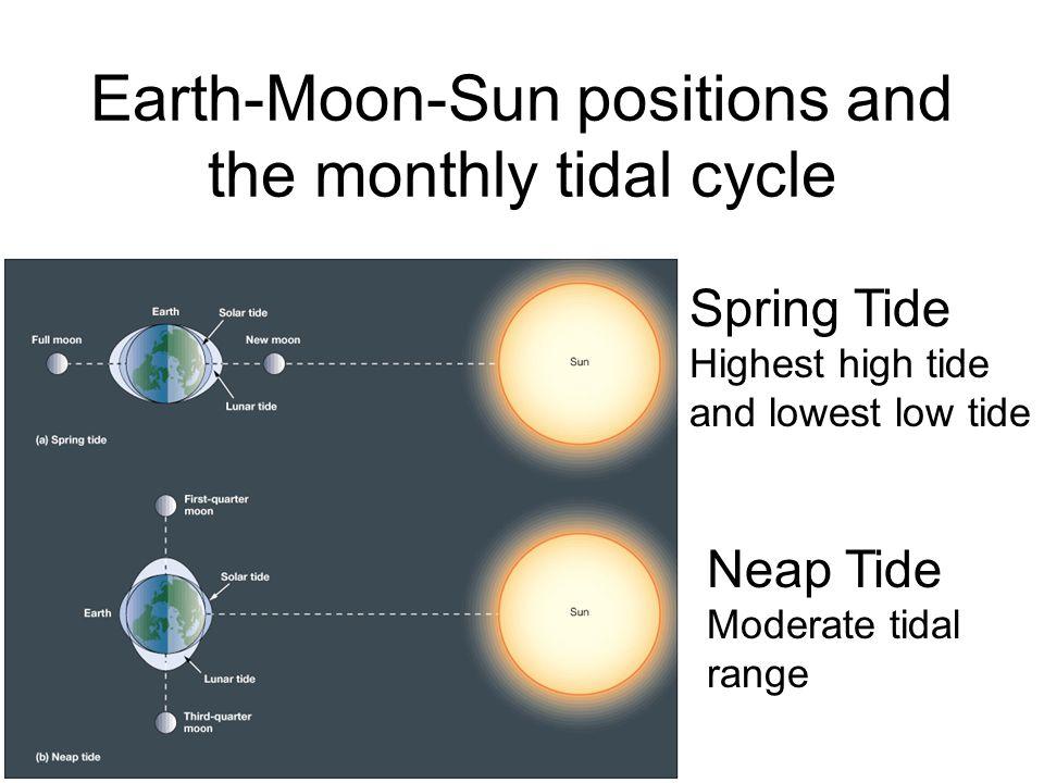 http://life.bio.sunysb.edu/marine bio/mbweb.html Tidal Information HAWAIIAN ISLANDS Mean Spring Mean Tide Station Latitude Longitude Range Range Level Predictions SAND ISLAND, MIDWAY ISLANDS 28° 12.7 177° 21.6 0.8 1.2 0.6 PredictionsPredictions Laysan Island 25° 46 171° 45 0.7 1.0 0.4 PredictionsPredictions East Island, French Frigate Shoals 23° 47 166° 13 0.9 1.4 0.6 PredictionsPredictions Nonopapa, Niihau Island 21° 52 160° 14 1.0 1.6 0.7 PredictionsPredictions Kauai Island Waimea Bay 21° 57 159° 40 1.0 1.6 0.7 PredictionsPredictions Port Allen, Hanapepe Bay 21° 54 159° 35 1.1 1.7 0.7 PredictionsPredictions NAWILIWILI 21° 57.4 159° 21.6 PredictionsPredictions Hanamaulu Bay 22° 00 159° 20 0.0 1.2 1.8 PredictionsPredictions Hanalei Bay 22° 13 159° 30 1.3 1.8 0.8 PredictionsPredictions Oahu Island Haleiwa, Waialua Bay 21° 36 158° 07 - - 1.6 0.7 PredictionsPredictions Waianae 21° 27 158° 12 1.2 1.8 0.8 PredictionsPredictions HONOLULU 21° 18 157° 52 1.3 2.0 0.8 PredictionsPredictions Hanauma Bay 21° 17 157° 42 1.3 1.9 0.8 PredictionsPredictions Waimanalo 21° 20 157° 42 1.1 1.8 0.8 PredictionsPredictions MOKUOLOE 21° 26.2 157° 47.6 1.2 2.0 1.0 PredictionsPredictions Waikane, Kaneohe Bay 21° 30 157° 51 1.4 2.2 1.1 PredictionsPredictions