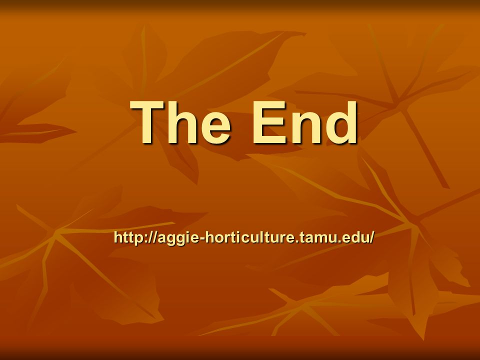 The End http://aggie-horticulture.tamu.edu/