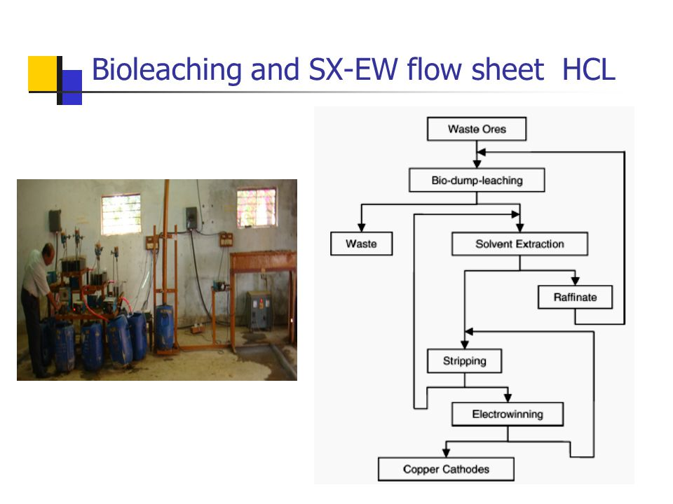 Bioleaching and SX-EW flow sheet HCL