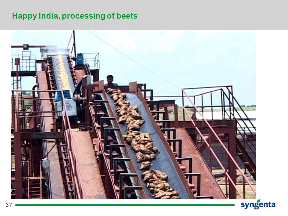37 Happy India, processing of beets