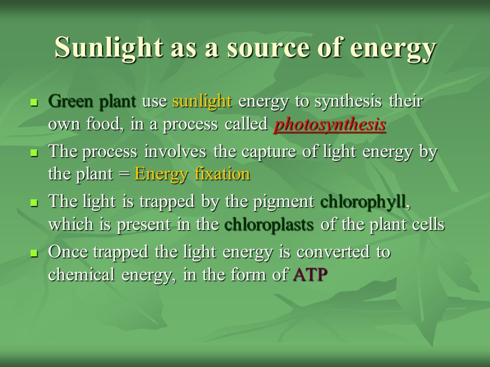 Summary of photosynthesis The raw materials used in photosynthesis are carbon dioxide (absorbed from the atmosphere, through stomata on the leaf surface) and water (from the soil, which travels up through the plant in vessels called xylem) The plant converts these raw materials with the help of sunlight energy (trapped by chlorophyll), into a plant food source (carbohydrate) glucose (stored as starch) and a by product oxygen (released through the stomata) A carbohydrate is a compound containing the chemical elements carbon, hydrogen and oxygen (See sheets pg 33) Carbon dioxide + Water + light energyCarbohydrate + Oxygen