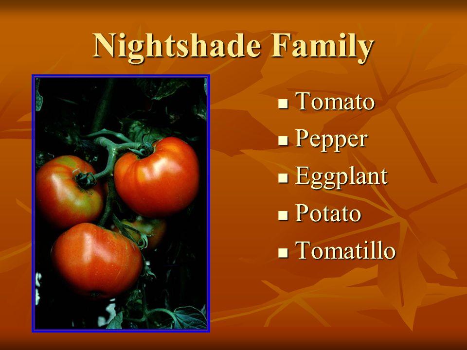 Nightshade Family Tomato Tomato Pepper Pepper Eggplant Eggplant Potato Potato Tomatillo Tomatillo