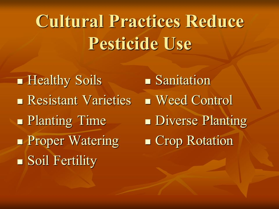 Cultural Practices Reduce Pesticide Use Healthy Soils Healthy Soils Resistant Varieties Resistant Varieties Planting Time Planting Time Proper Watering Proper Watering Soil Fertility Soil Fertility Sanitation Sanitation Weed Control Weed Control Diverse Planting Diverse Planting Crop Rotation Crop Rotation
